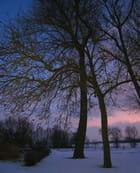 Jour d'hiver - Francine ANCEL