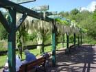 Parc floral de la colline aux oiseaux - jean-luc small