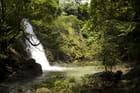 Chute d'eau dans la jungle par hellot pelagus sur L'Internaute