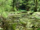 Ruisseaux