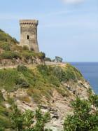 Cap Corse - CHARLES LUCCHINI