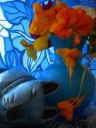 Harmonie de bleu ,jaune et orange par gaelle Houle-marchand sur L'Internaute