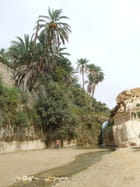 Oasis de montagne - Mohamed Larbi BOUGUIRA