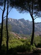 Face sud de la montagne Sainte-Victoire - Sylviane CHAUVIN