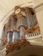L'orgue de l'église Saint-Roch par Gérard ROBERT sur L'Internaute