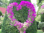 I love you - Loetitia PORTERIE