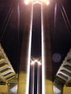 Pont flaubert - joel crevel