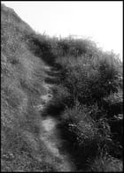 Chemin de la falaise - Sebastien Pery