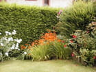 Allee du jardin par anne marie magnen-fleury sur L'Internaute
