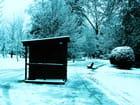 Paysage d'hiver. - jean-marc puech