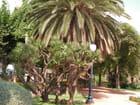 Jardin à Blanes - Fabienne Schaller
