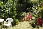 Jardin 2 - Violette LUTZ
