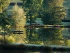 Matin d'automne en Brionnais - Marie-Anne GERBE