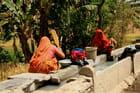 Scène de la vie rurale au Rajasthan par Jacqueline Gardès sur L'Internaute