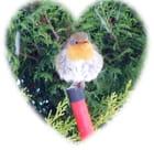 Coeur de plumes - MAURICETTE-LAURICETTE THIERRY