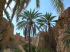 Oasis tunisie par Michel GAGNON sur L'Internaute