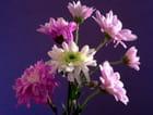 Petit bouquet - Huguette Roman