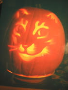 Le chat d'halloween 2006 - JEAN JACQUES BARBOT