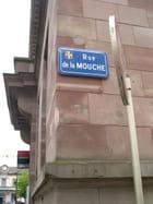 LA MOUCHE - robert roggi