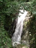 cascade - beatrice domejean