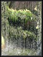 Rideau d'eau. par Jean-Claude TRIBOUT sur L'Internaute