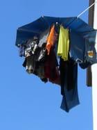 Parasol à linge par Nathalie Gout sur L'Internaute