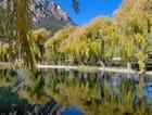 Reflet dans l'eau du lac par robert violin sur L'Internaute