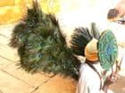 Vendeur d'éventails en plumes de paon - Christian VILLAIN