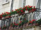 balcon fleuri par SORAYA AGUDO sur L'Internaute