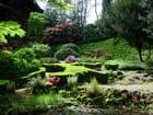 Jardin japonais par Emile MARI sur L'Internaute