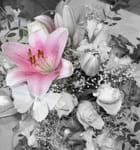 Bouquet de la mariée - Julie LOCUSSOL