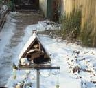 Oiseaux en hiver - Gisèle THIEBAUT