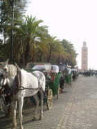 Taxi koutoubia - marie-france tariotte