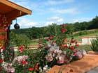 petit jardinet fleuri par RAYMOND CARON sur L'Internaute