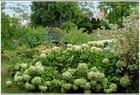 Dans les jardins de Vieils Maisons -