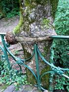 L\'arbre glouton ! - Huguette Roman