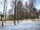 Jour d'hiver - Annonciade Crepin