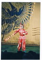 Costumes de l'opéra de Pékin par Genevieve LAPOUX sur L'Internaute