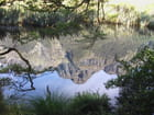 Lac Mirror - jeanine perrin