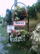 L'entrée de Sauve -