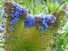 Eventail fleuri - Malou TROEL