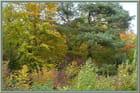 Tableaux d'automne à Gravigny - 4 - Jacqueline DUBOIS