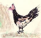 La poule de mamie laurency - Denise mamielaurency
