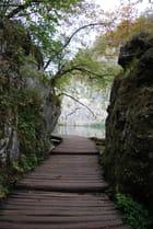 les passerelles des lacs de Plitvice - Genevieve LAPOUX