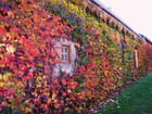 Maison aux couleurs de l'automne. par jean-marc puech sur L'Internaute