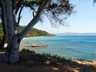 Mer en Corse - Brigitte CAUCHIES