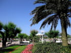 Jardins de l'hôtel de ville-San Sebastian (15) - Jean-pierre MARRO