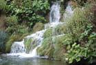 les cascades de Plitvice - Genevieve LAPOUX