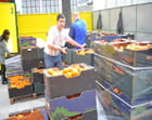 Fete des citrons à Menton - André COTONNET