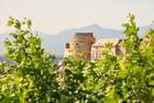 Tour genoise d'Erbalunga - CHARLES LUCCHINI